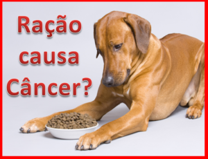 racao-causa-cancer